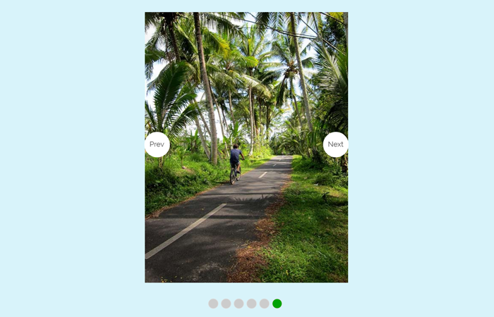 Image Viewer with Prev and Next Buttons
